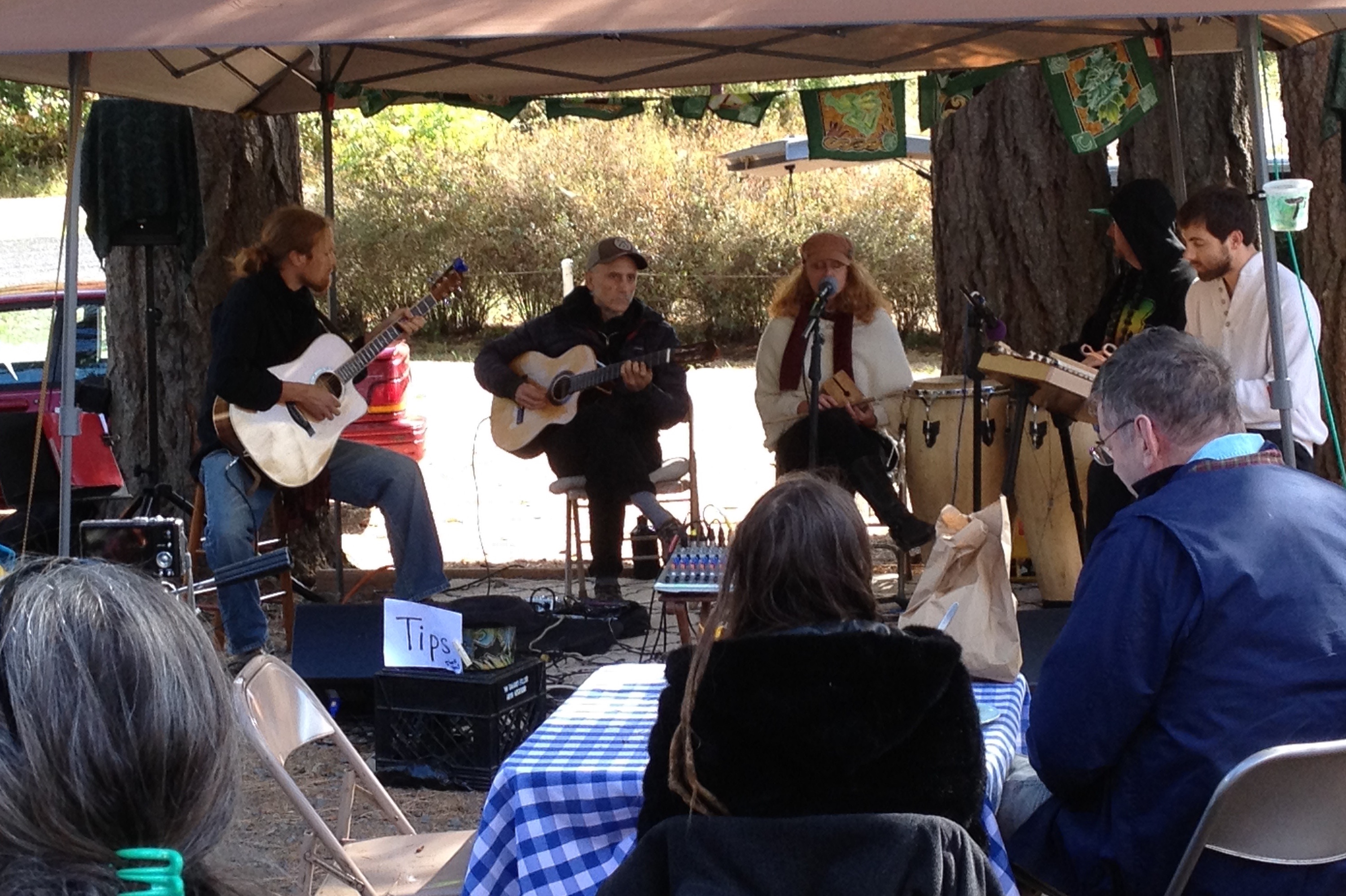 Jason Bailey, Deva Priyo and friends perform at the 2016 Harvest Fair