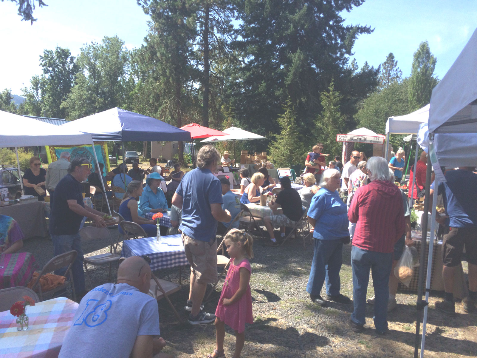 Shoppers at the 5th Annual Locavore Hamburger benefit lunch on August 24th this year